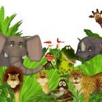 Jungle wild spilleautomat video