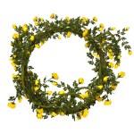 Рамка с желтых роз — Стоковое фото #61587569