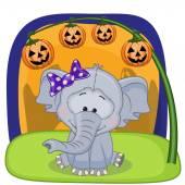 Halloween  Elephants with pumpkin — Stock Vector