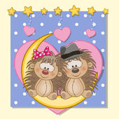 Cute Lovers Hedgehogs — Stock Vector
