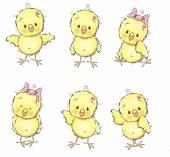 Six chicks — Stock Vector
