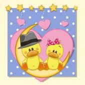 Lovers Ducks — Stock Vector