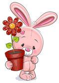 Králík s květinou — Stock vektor