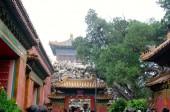 Pagoda — Foto Stock