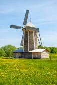 Windmill  in a green meadow — Stock Photo