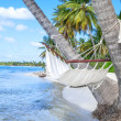 Empty hammock between palm trees on tropical beach — Stock Photo #68166427