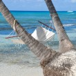 Empty hammock between palms trees at sandy beach — Stock Photo #68166439