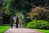 Horizontal colour image of 2 female friends taking a walk in park on a sunny spring day — Stock Photo