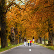 Family of 4 taking a walk in beautiful alley with  Autumn colors — Stock Photo #61727247