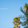 Airplane contrail against clear blue sky, vacation concept — Stock Photo #71407911