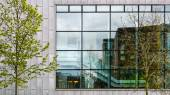 Modern office building exterior with many windows, reflexions and trees — Stock Photo