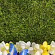 Spring or summer border background — Stock Photo #65576017