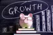 Piggy Bank with growth chart — Stock Photo
