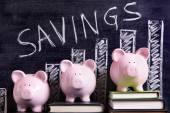Piggy Banks with savings chart — Stock Photo