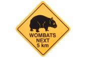 Wombat warning sign — Stock Photo