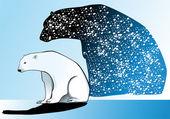 Oso polar — Vector de stock