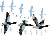 Wild geese in flight — Wektor stockowy