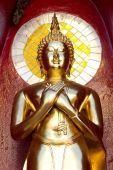 Gold buddha statue mirror background — Foto de Stock
