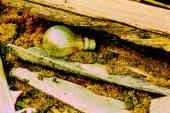 Old bulb in wood  Scrap color technic — Stock Photo