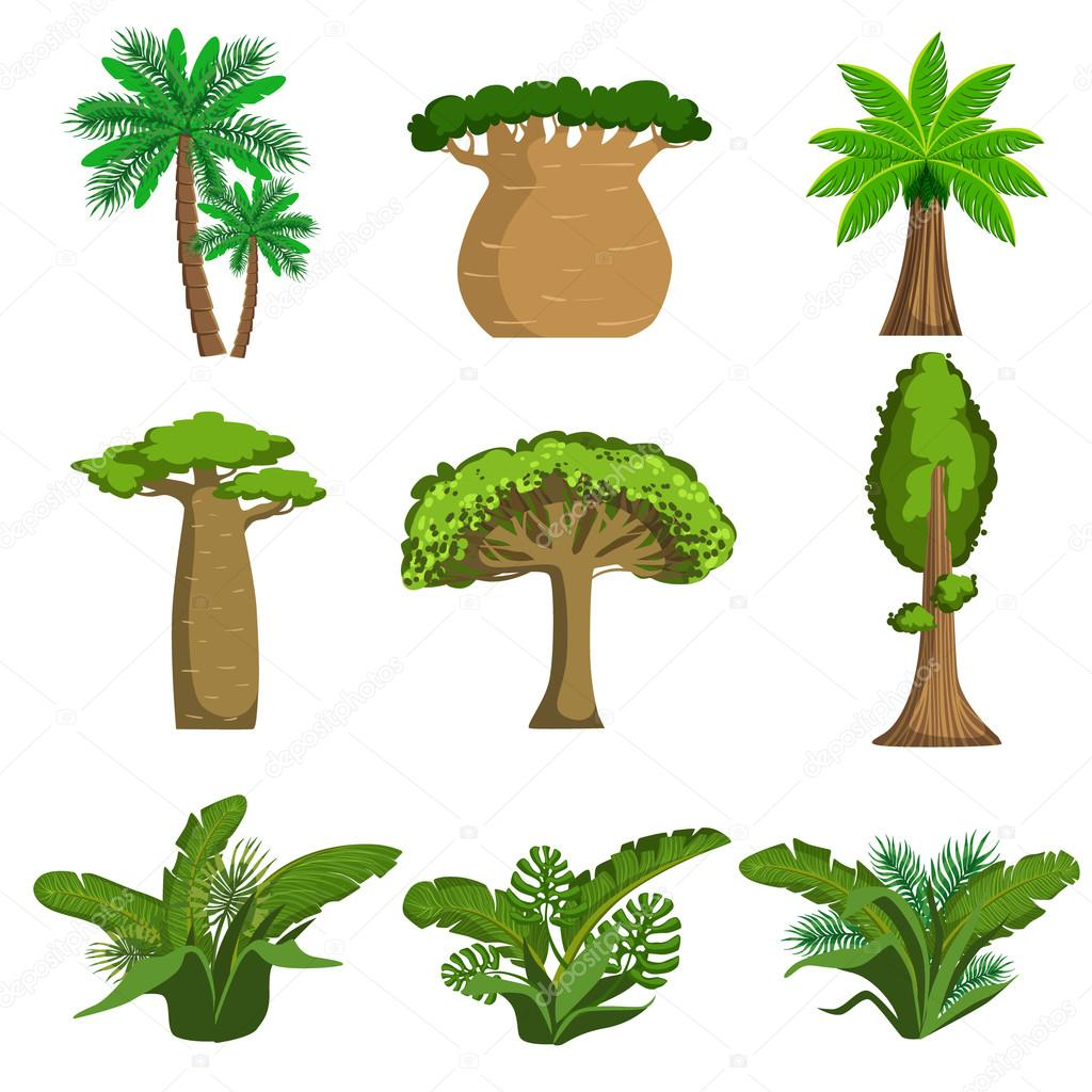u00c1rboles de la selva y un conjunto de plantas vector de rainforest clip art for children rainforest clip art animals