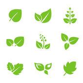Sada zelených listů — Stock vektor