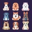 Breeds of Dogs Icons. — Stock Vector #77460002