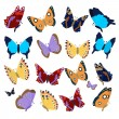 Collection of colored butterflies — Vector de stock  #79037064