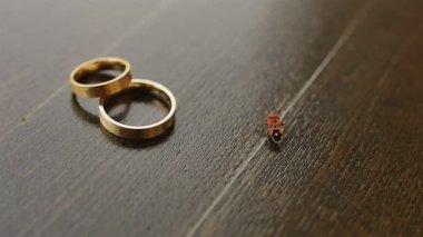 Wedding golden rings with bug crosses the path close up — Stock Video