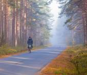 Cyclist in forest early in the morning — Photo
