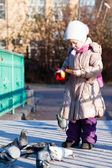 Little girl with pigeons — Foto Stock