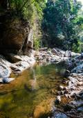 Landscape with river and stones in jungle — Foto Stock
