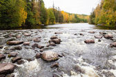 Rapids del fiume in autunno — Foto Stock
