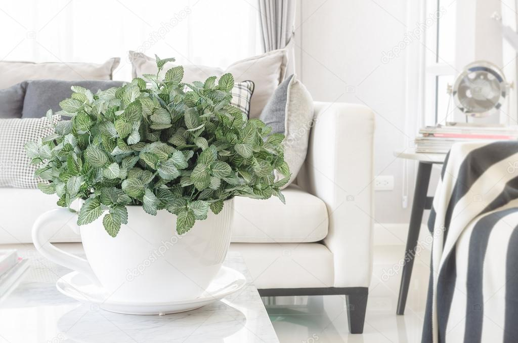 witte schaal van planten op tafel in moderne woonkamer — stockfoto, Deco ideeën
