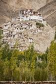 Chemdey Gompa, monastère bouddhiste Ladakh, Inde - septembre 2014 — Photo