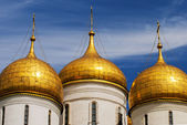 Close up The Cathedral of the Annunciation in Kremlin, Moscow, Russia — ストック写真