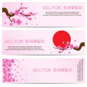 Spring Banner with Blooming Sakura — Stock Vector