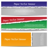 Torn Color Paper Banners. — Stock Vector