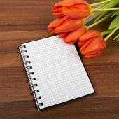 Red tulip flowers on the table, background — ストック写真