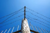 Barbed wire against clear blue sky — Stock Photo
