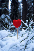Red heart in the snow — Stock Photo