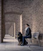 Young woman sitting on a bench with your best four-legged friend — Foto de Stock