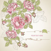 Sheet of old paper decorated of pink roses with green leaves — Stock Vector