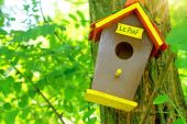 Cute little birdhouse on a tree. Home sweet home concept. — Stock Photo