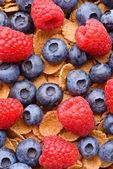 Muesli with berries — Foto Stock
