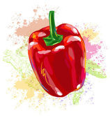 Red Bell Pepper — Stock Vector