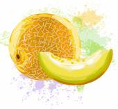 Melon on spots of paint — Vetor de Stock