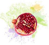 Pomegranate slice on background of grunge spots — Stock Vector