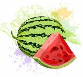 Watermelon and watermelon slice — Stock Vector