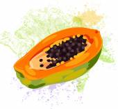Papaya slice on spots of paint — Stock Vector