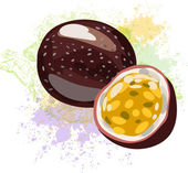 Passion fruit on spots of paint — Stock Vector
